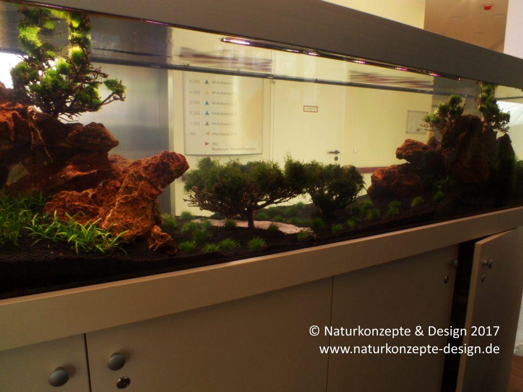 Aquarienbau Berlin
